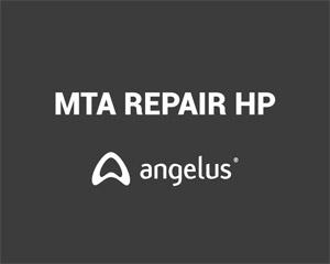 Cimento Reparador MTA Repair HP 2 Aplicações Angelus